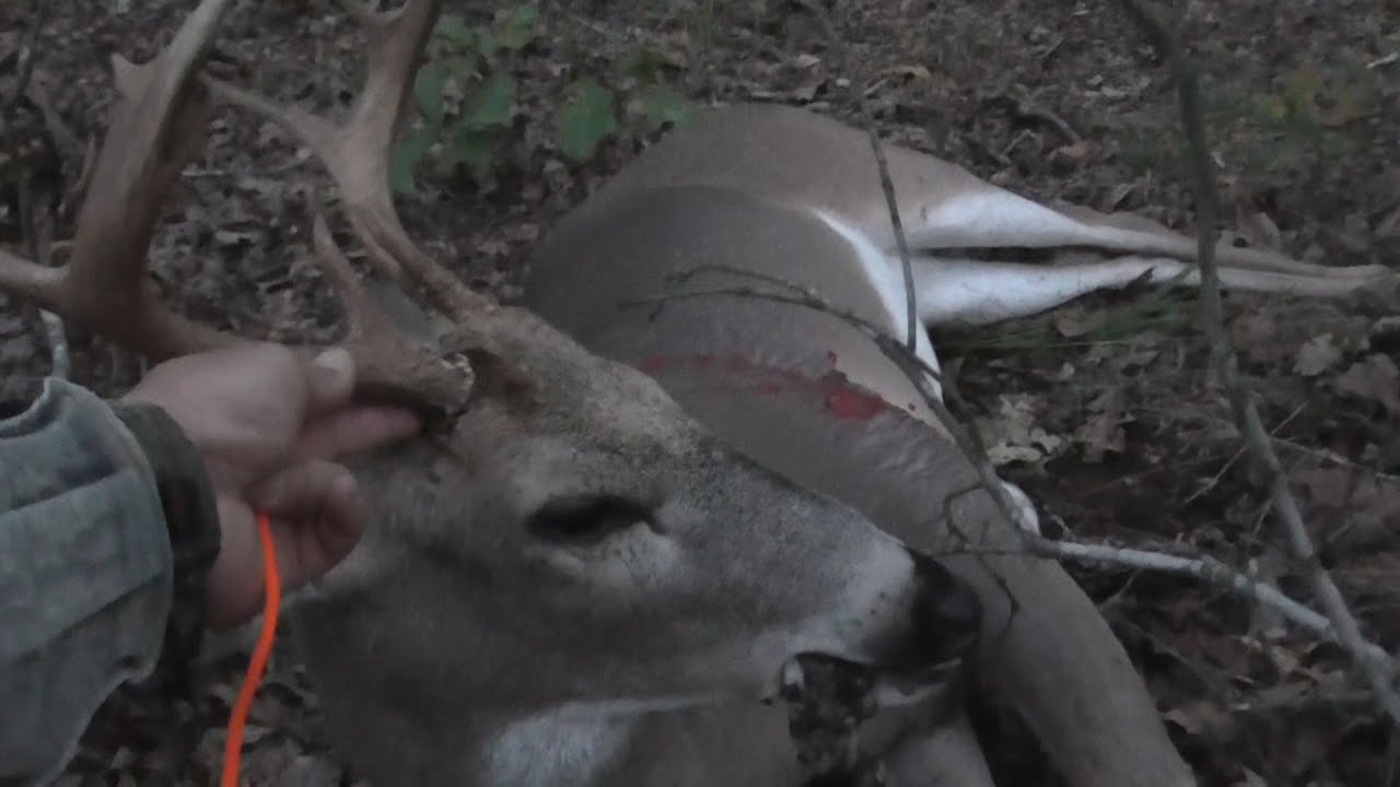 2014 Arkansas Archery Week 3 Deer Hunting