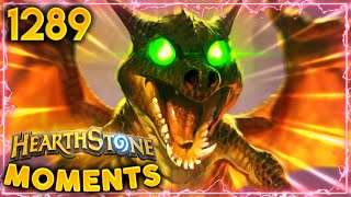Even A DRAGON Would KNEEL BEFORE THIS WHELP  | Hearthstone Daily Moments Ep.1289