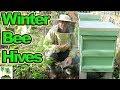Overwintering Honey Bee Hives