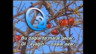 "Azeri Karaoke: ""Aman ovçu"" Xalq Mahnısı"