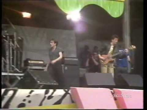 TC Matic live @ PINKpop 1983 - Que Pasa - Le Java - Touch Me - O LaLa c'est Magnifique