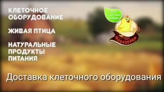 Доставка клеток // доставка клеток по России