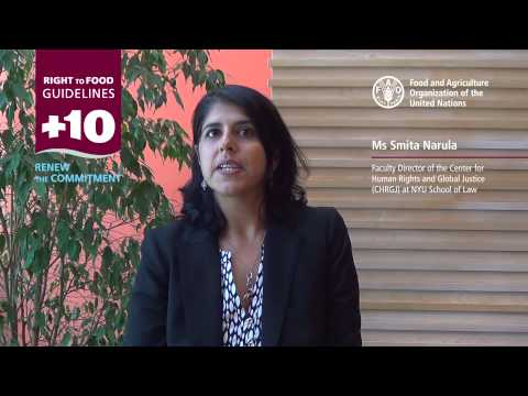 10 Years of the the Right to Food Guidelines - Interview with Smita Narula