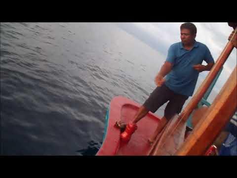 mancing-mania-sunset-fishing-di-maldives-7-feb-2018
