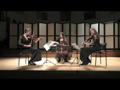 Serafino String Trio- Jean Sibelius string trio in g minor