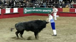 Jumping Over Bulls - Recortadores in Canada