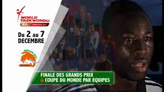 Grand Prix & Coupe du Monde de Taekwondo par équipes - 2017 / SPot 2