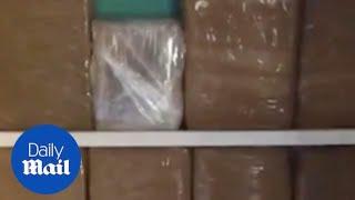 9.6 kilos of cocaine worth £1 million found in secret compartment