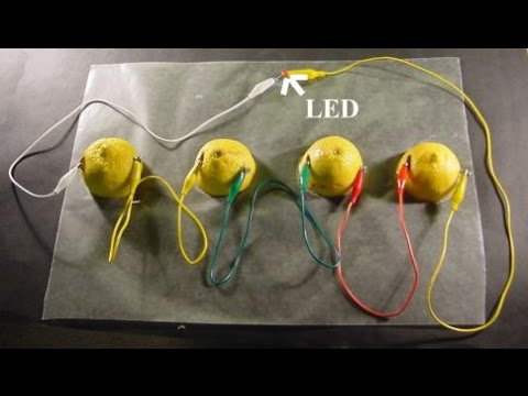 thesis lemon battery making The hypothesis of the lemon battery project is to demonstrate how a galvanic /voltaic battery works the insertion of two different metals (used as anode and cathode) into the lemon (acting as the.