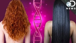 Why Do We All Have Different Hair?