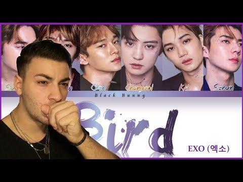 EXO - 'BIRD' (COLOR CODED LYRICS) | REACTION!!!