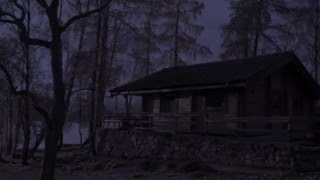 The Mouse House Trailer