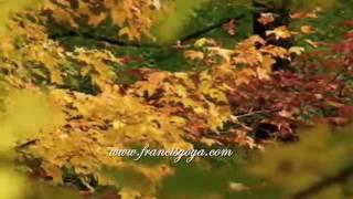 FRANCIS GOYA ~Johnny Guitar mp3