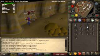 Motherlode Mine Guide - Great AFK Money