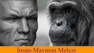 Sovyetlerin Çılgın Fikri İnsan-Maymun Melezi Yapma Çalışması