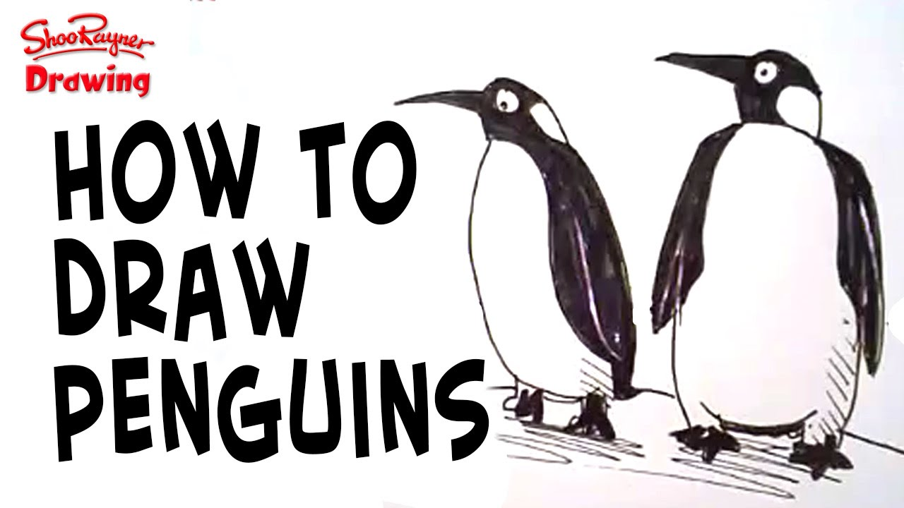 how to draw penguins easy to follow video