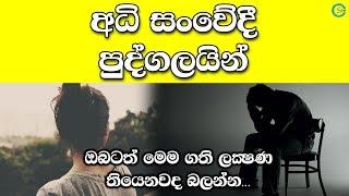 Highly Sensitive People | Shanethya TV