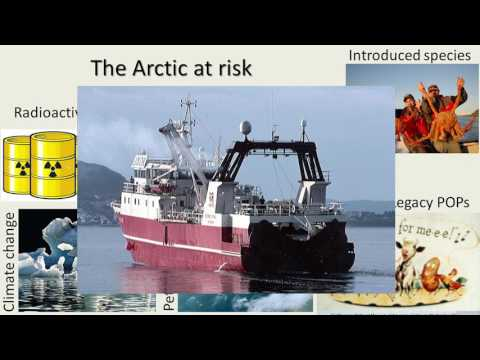 Environmental Sustainability Challenges In The Arctic – Developing Solutions With The Help Of DEB