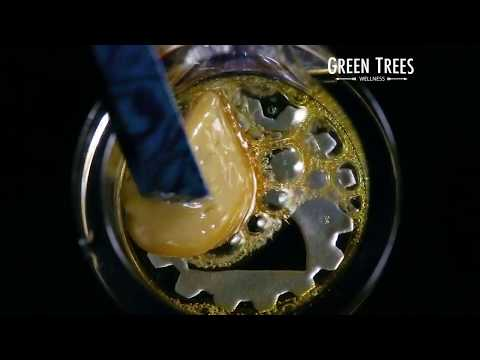 Green Trees - Platinum Cookies Hash Rosin
