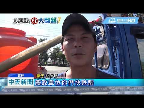20181121中天新聞 雲林農民上節目談菜價 稱挺綠實在過不下去