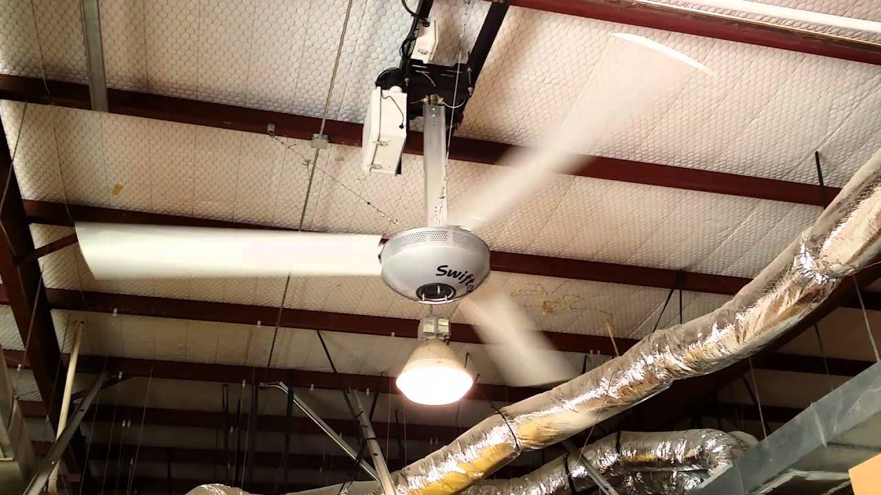 Swifter 12 Ceiling Fan in Warehouse