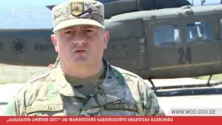 Վրաց թուրք ադրբեջանական զորավարժություններ Վազիանիում