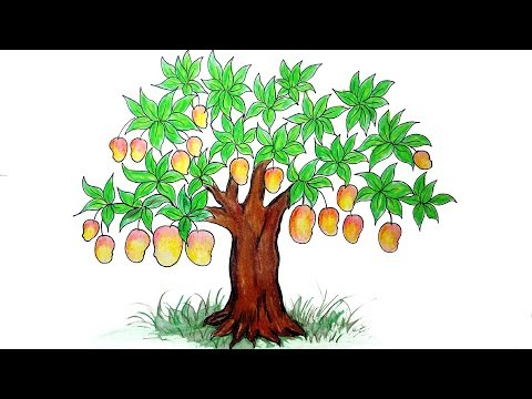 How To Draw Jackfruit Tree Step By Step Very Easy Youtube Download in under 30 seconds. how to draw jackfruit tree step by step