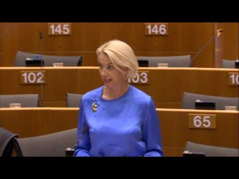 Angelika Mlinar 31 May 2017 plenary speech on EU Agency for Fundamental Rights