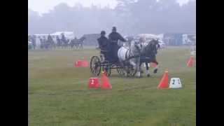 Roger Campbell cones Sandringham 2* 2014