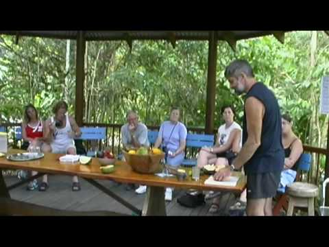 Cape Tribulation, Australia Travel Video Guide