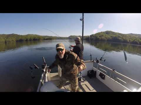 4/26/2018 - 6lb Brown Trout Lake Jocassee - SCDNR Angler Recognition Qualifing Fish