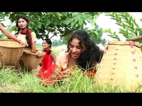 Chitwan Tharu Songs (Sunri Sakhiya)