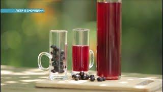 Как сделать из смородины ликер | Ранок з Україною