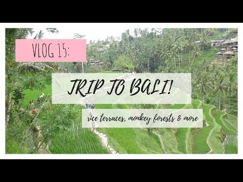 study abroad in thailand | VLOG 15 | trip to bali!! rice terraces, monkey forests & more
