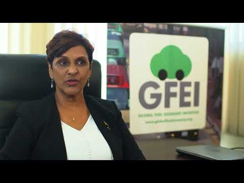 Global Fuel Economy Initiative: Partnering with Jamaica