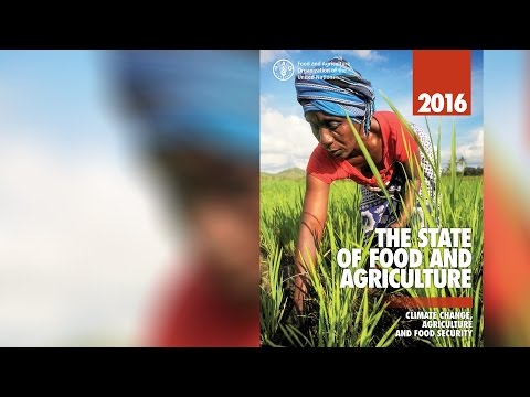 The State of Food and Agriculture 2016 (SOFA)