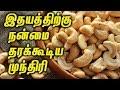Incredible Benefits in Cashew nuts    இதயத்திற்கு நன்மை தரக்கூடிய முந்திரி - Health Tips In Tamil