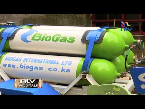 "NTV Wild Talk S3 E7 ""Bio Gas Solutions"""