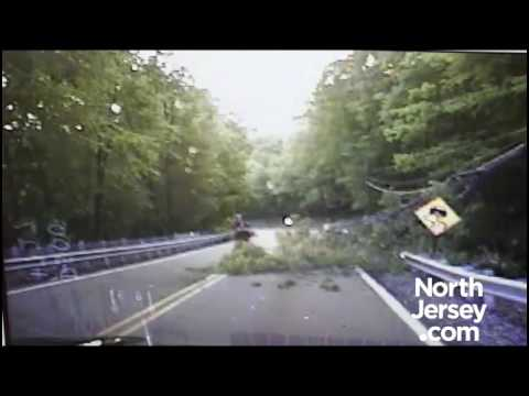 NJ cop struck by tree
