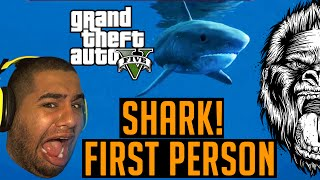 GTA 5 Shark Encounter - Funny Moments - Grand theft Auto 5 Next Gen Shark First Person