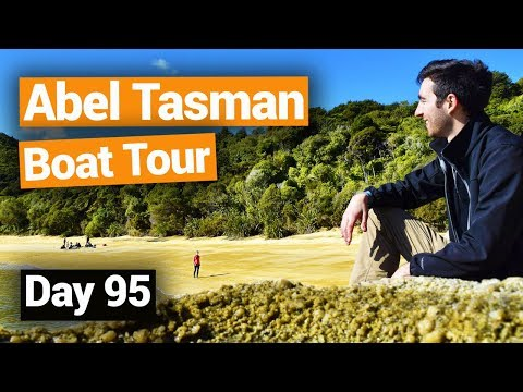 Stunning Abel Tasman National Park Boat Tour - New Zealand's Biggest Gap Year – BackpackerGuide.NZ