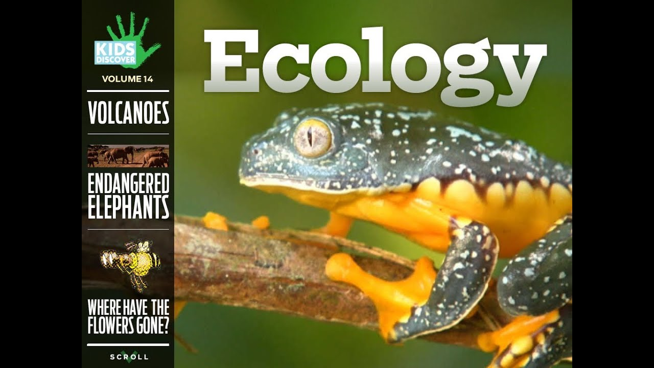 ECOLOGY by Kids Discover (for iPad) - YouTube