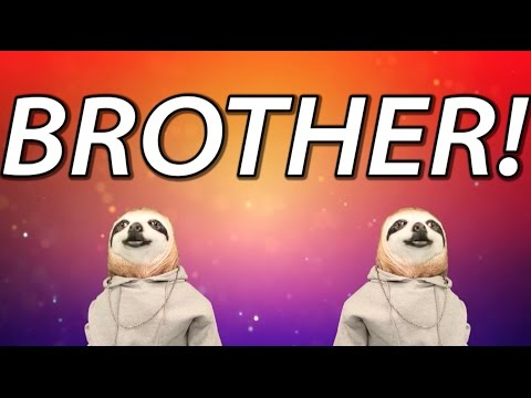 HAPPY BIRTHDAY BROTHER! - SLOTH HAPPY BIRTHDAY RAP