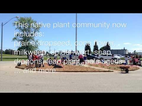 Besser Elementary Schoolyard Habitat