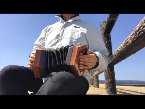 Enya caribbean blue on 40 button Anglo concertina コンサーティーナ cover