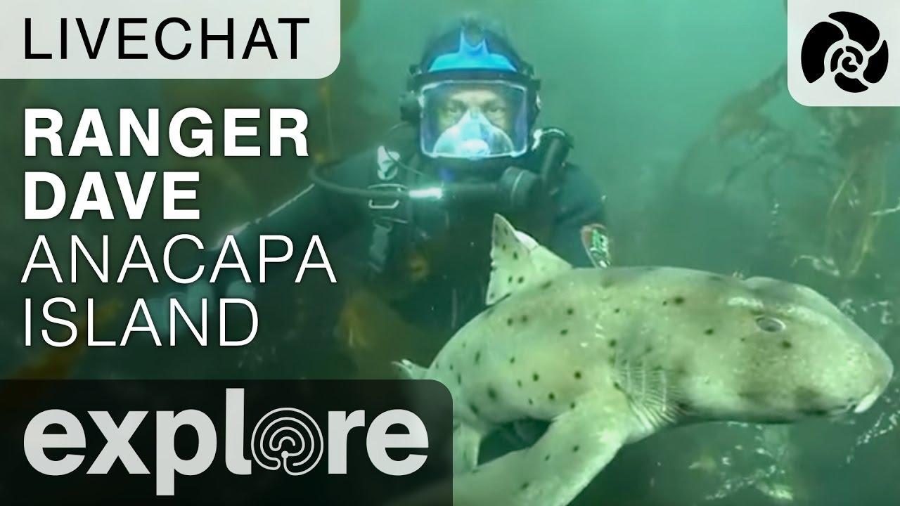 Ranger Dave Anacapa Island - Underwater Live Chat