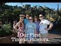 Walt Disney World Vacation December 2017: Day 2 Part 1-First Time in Pandora