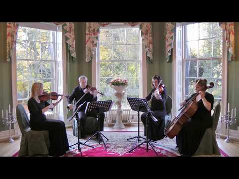 Best Day Of My Life (American Authors) Wedding String Quartet