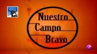Ganadería de D. José Vázquez Fernández (Nuestro Campo Bravo - Año 2008)