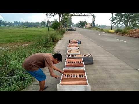AKLAN RACING PIGEON ASSOCIATION